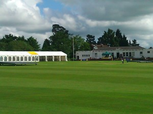 Sevenoaks Vine - preparing for Cricket Week